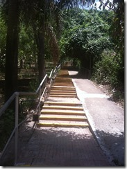 Stairs to Vipassana meditation hall